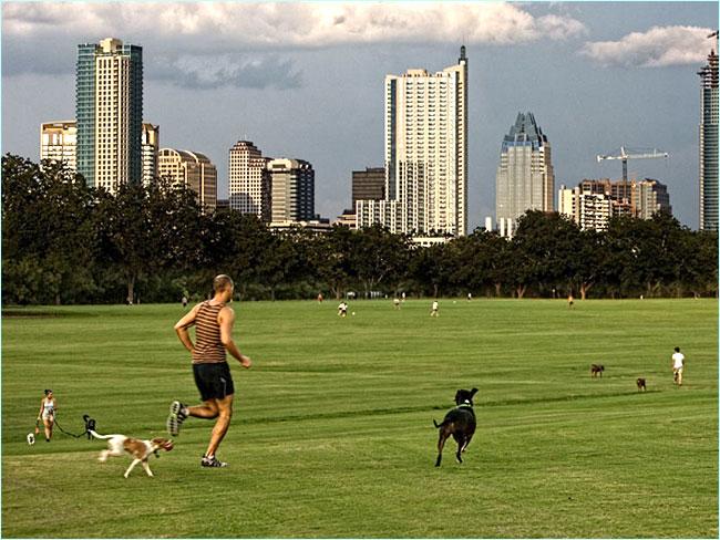 Dog Friendly Austin Parks